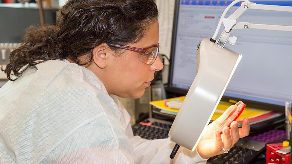Veterinary Diagnostic Laboratories - University of Georgia College